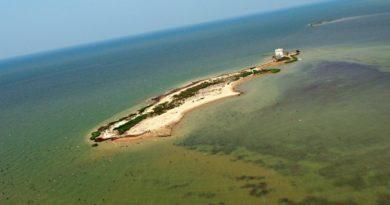 Голландский остров в Чесапикском заливе