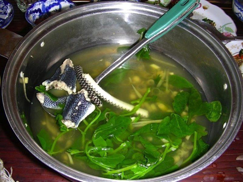 Змеиный суп из Китая