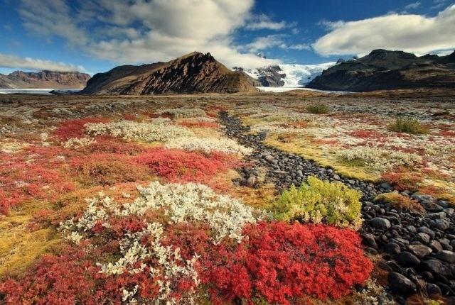 Исландия: когда лучше ехать