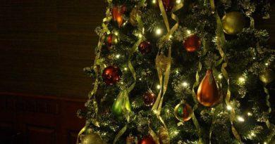 Почему Ёлка? Как возник обычай украшать хвойное дерево?