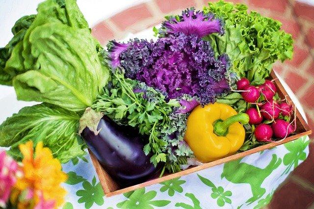 Польза овощей для организма человека