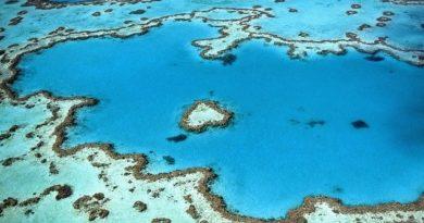 ТОП-5 искусственных островов мира. Что там находится?