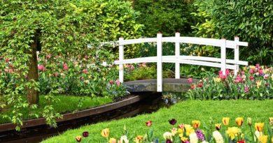 13 оригинальных идей для украшения сада