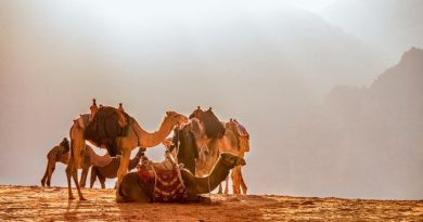 Иордания: карантин для туристов отменен