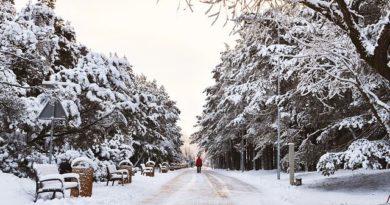 Литва: передвижение по стране запрещено до конца января