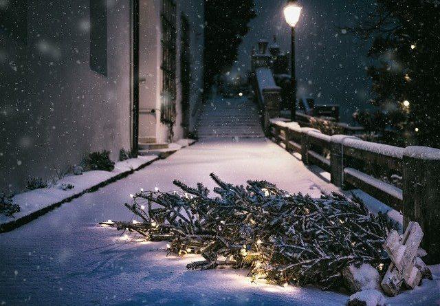 Новая жизнь старой новогодней ёлки: 10 крутых идей, которые преобразят ваш интерьер