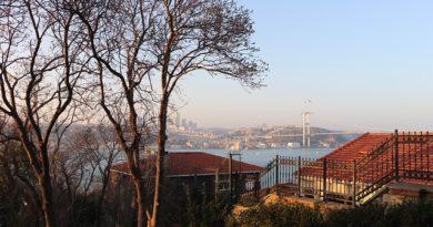 Турция огласила дату, когда полностью снимут блокировки и ограничения для туристов