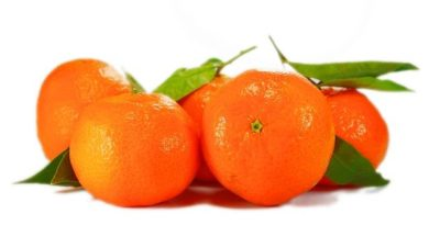 В Японии ящик отборных мандаринов продали по цене автомобиля