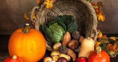 Что можно выращивать после картофеля