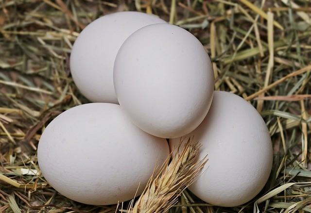 Как правильно выбирать яйца: вещи, о которых забывают хозяйки