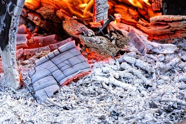 Какие культуры нуждаются в удобрении древесной золой