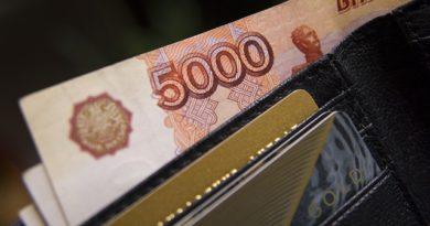 кошелёк с деньгами