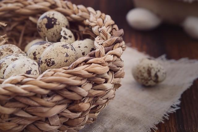 Перепелиные яйца: факты, о которых не знают