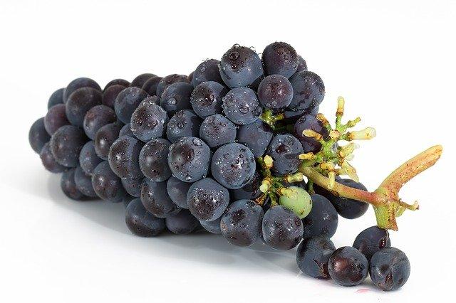 Полезные свойства винограда, о которых не догадываются