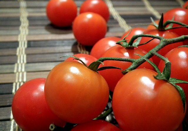 Выращивание томатов по методу Казарина