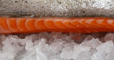 Как правильно хранить и размораживать рыбу
