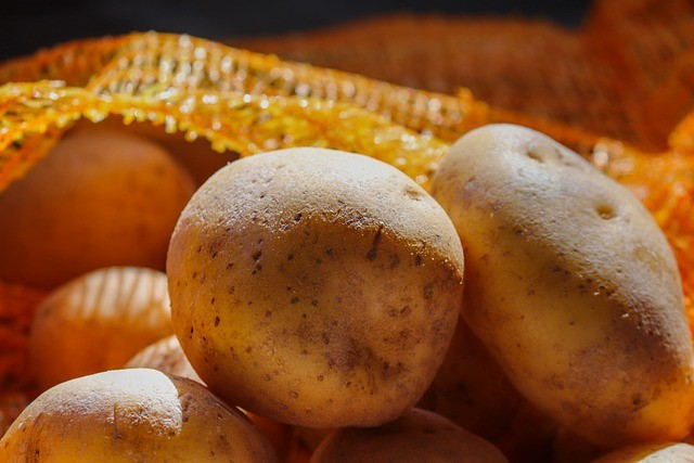 Подборка ранних сортов картофеля — на любой вкус