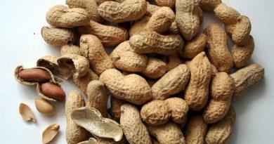 Разбираемся, какой арахис полезнее: сырой или жареный