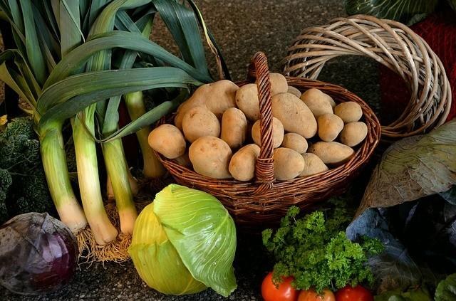 Спасение картофеля от проволочника народными и химическими средствами