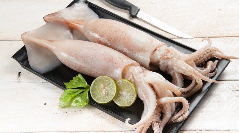 Все, что нужно знать о кальмарах: виды, как правильно выбрать и приготовить
