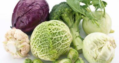 9 сортов ранней капусты, дающих обильный урожай