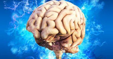 Ваш мозг ленивая сволочь или как предотвратить застывание и деградацию разума