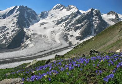 Северный Кавказ: 3 курорта выпустили единый сезонный ски-пасс
