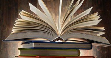 Несколько полезных деловых книг